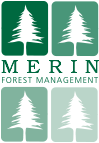 Merin Forest Management Logo